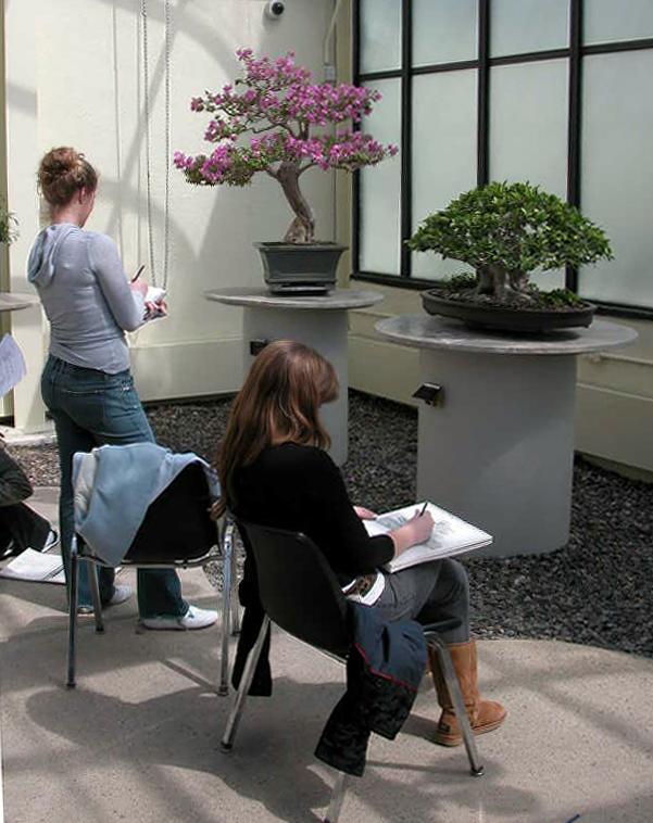 Art class in tropicals 200704_002.jpg