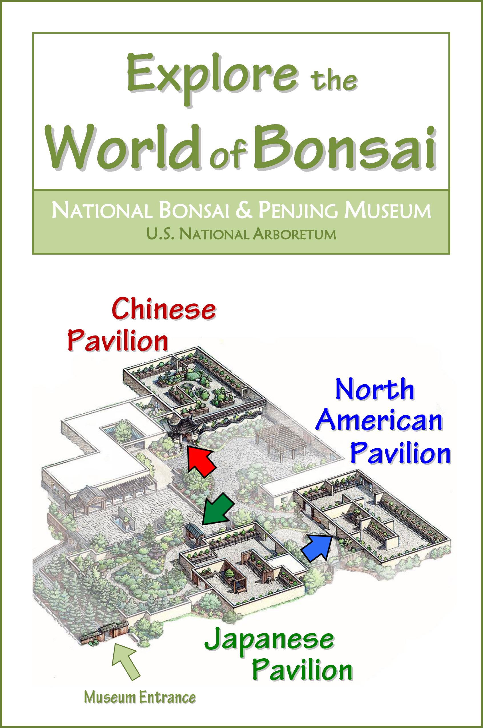 Explore the Bonsai Museum booklet cover.jpg