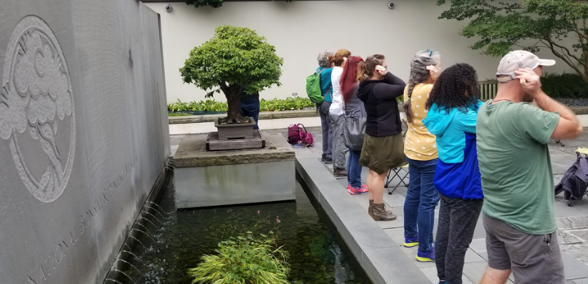 A class cups their ears to heighten the sound of the water fountain at the National Bonsai & Penjing Museum. (Photo By: Ana Ka'ahanui)
