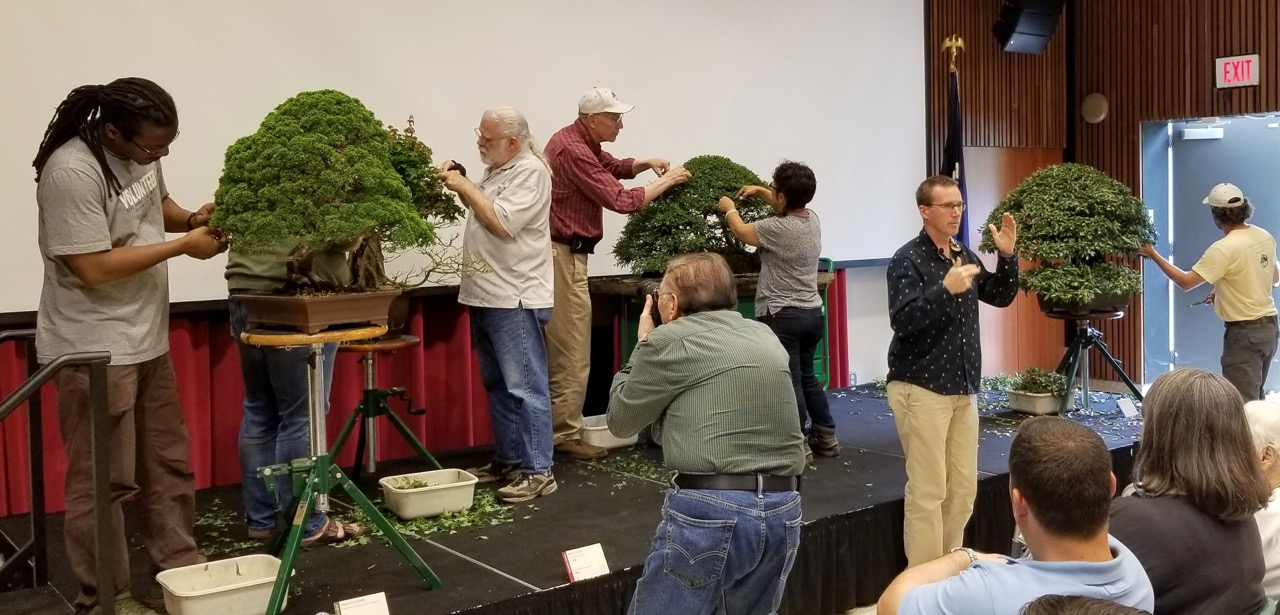 Michael Hagedorn leading a presentation during live bonsai demonstrations (Photo courtesy of Michael James)