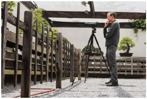 Voss composing bonsai photos at the National Bonsai & Penjing Museum.