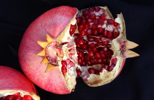 pomegranate copy.jpg