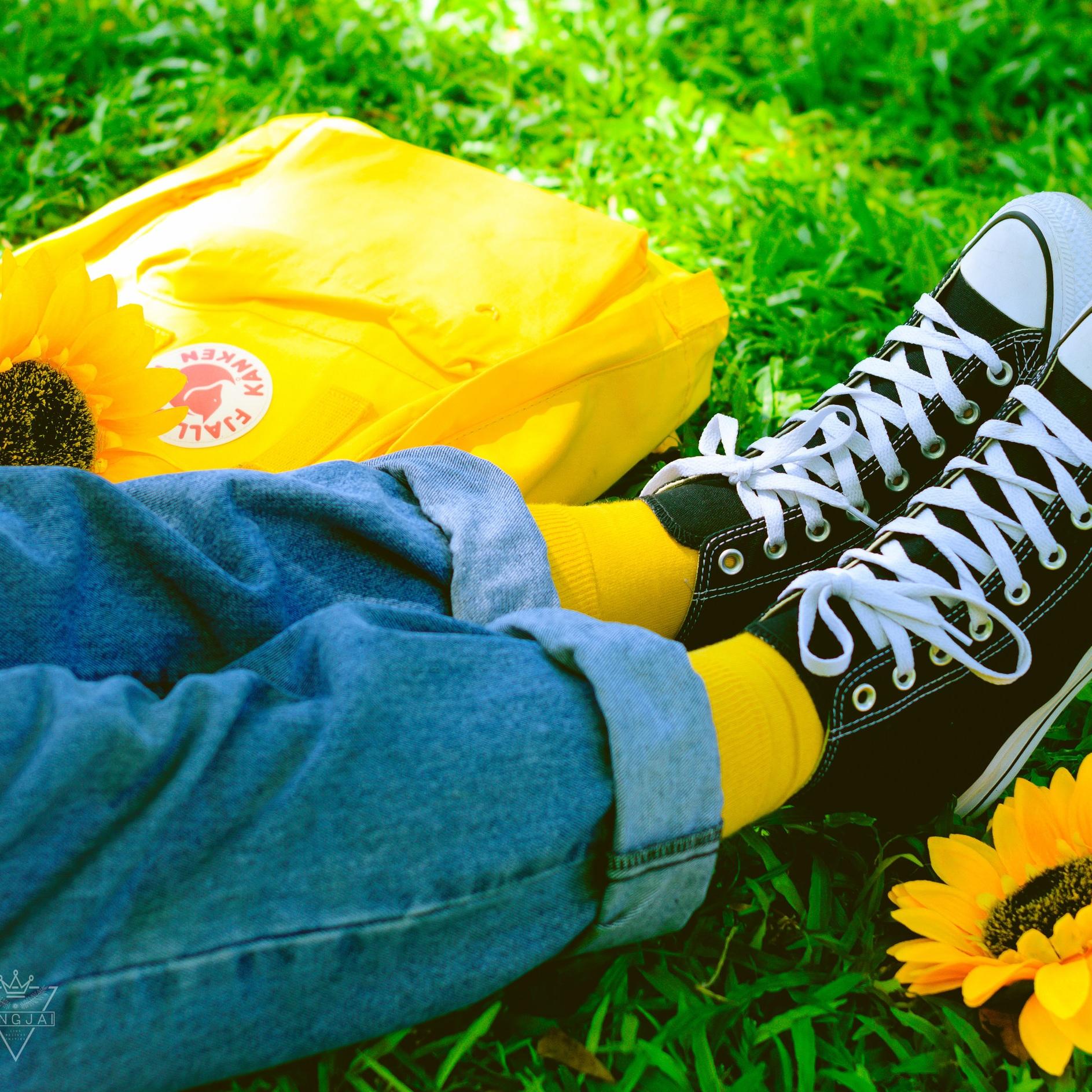 Socks - Soft & Sour!