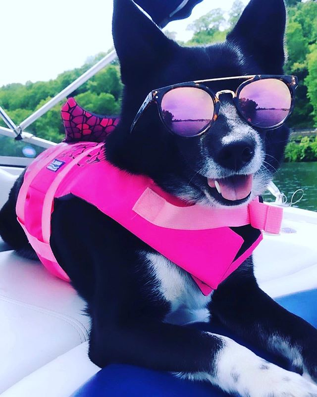 HAPPY MONDAY!  We hope you all had a great weekend like our sweet Libby did 😆 . . . 📷 @geen87 #repost @primereg