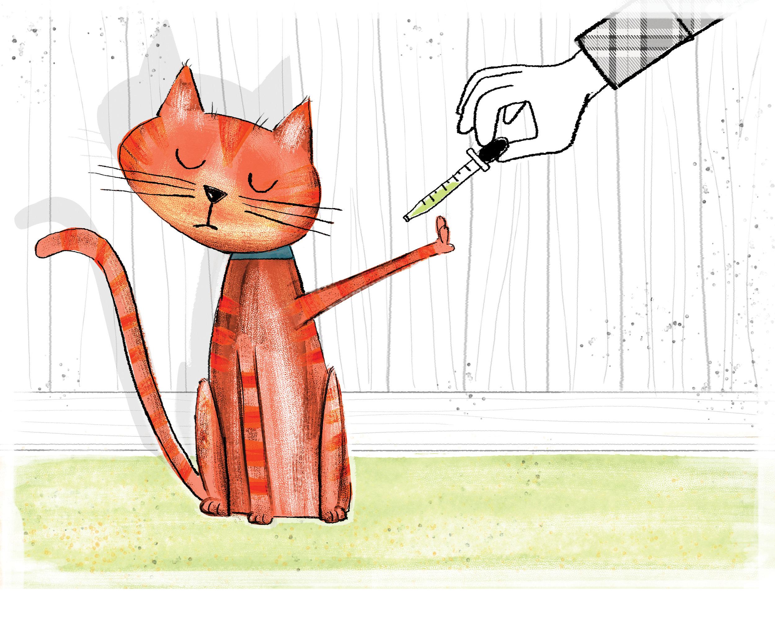 Cat_flat.jpg