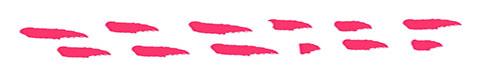 small dots .jpg