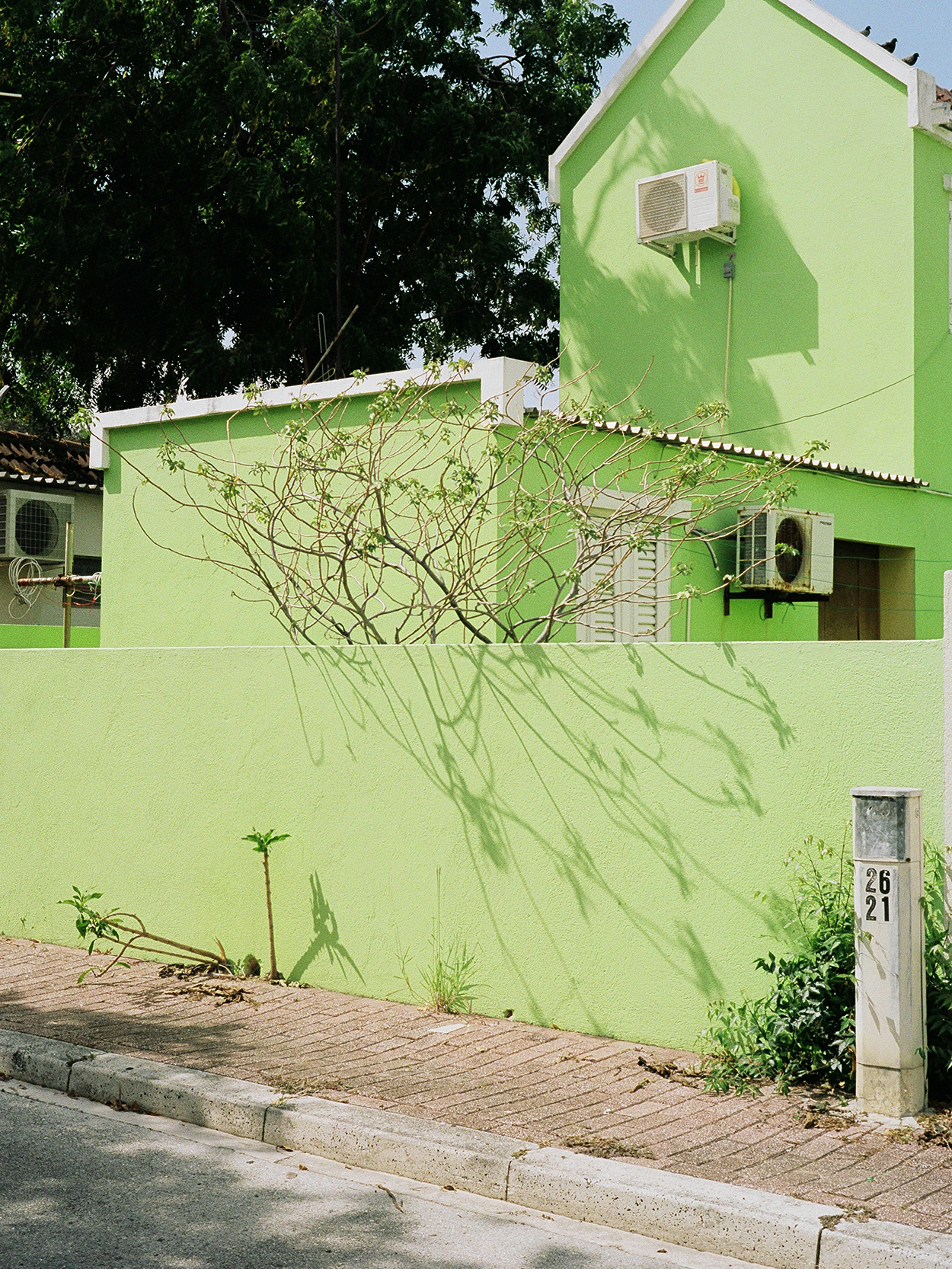 green-wall copy.jpg