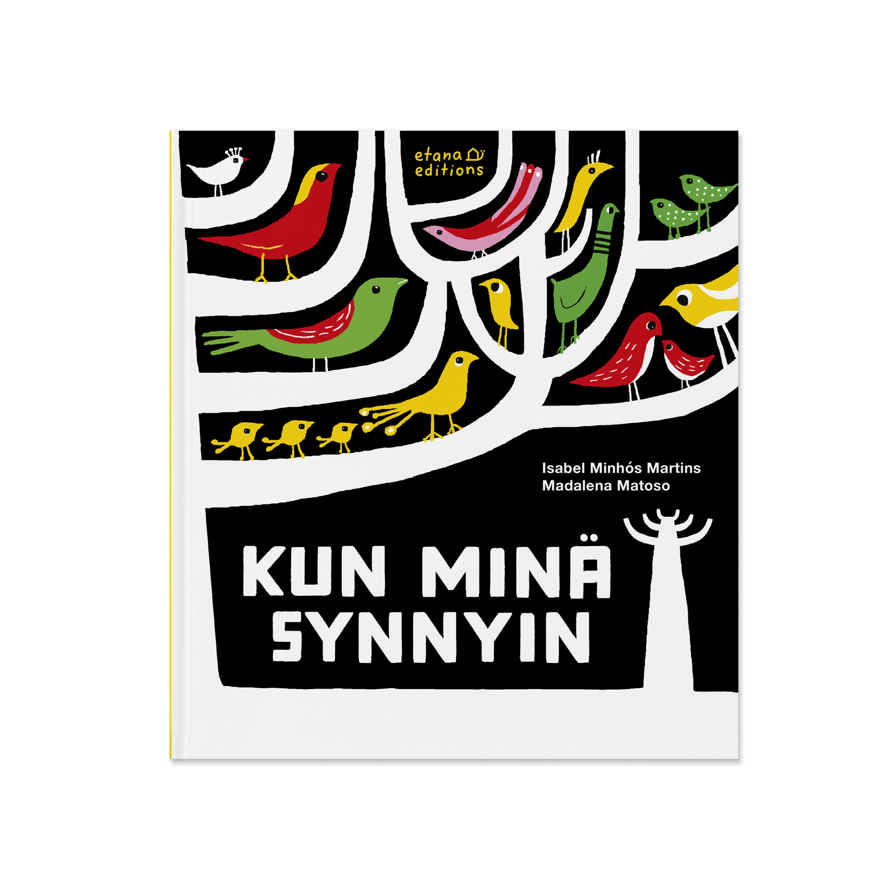 Covers_Kunminäsynnyin.jpg