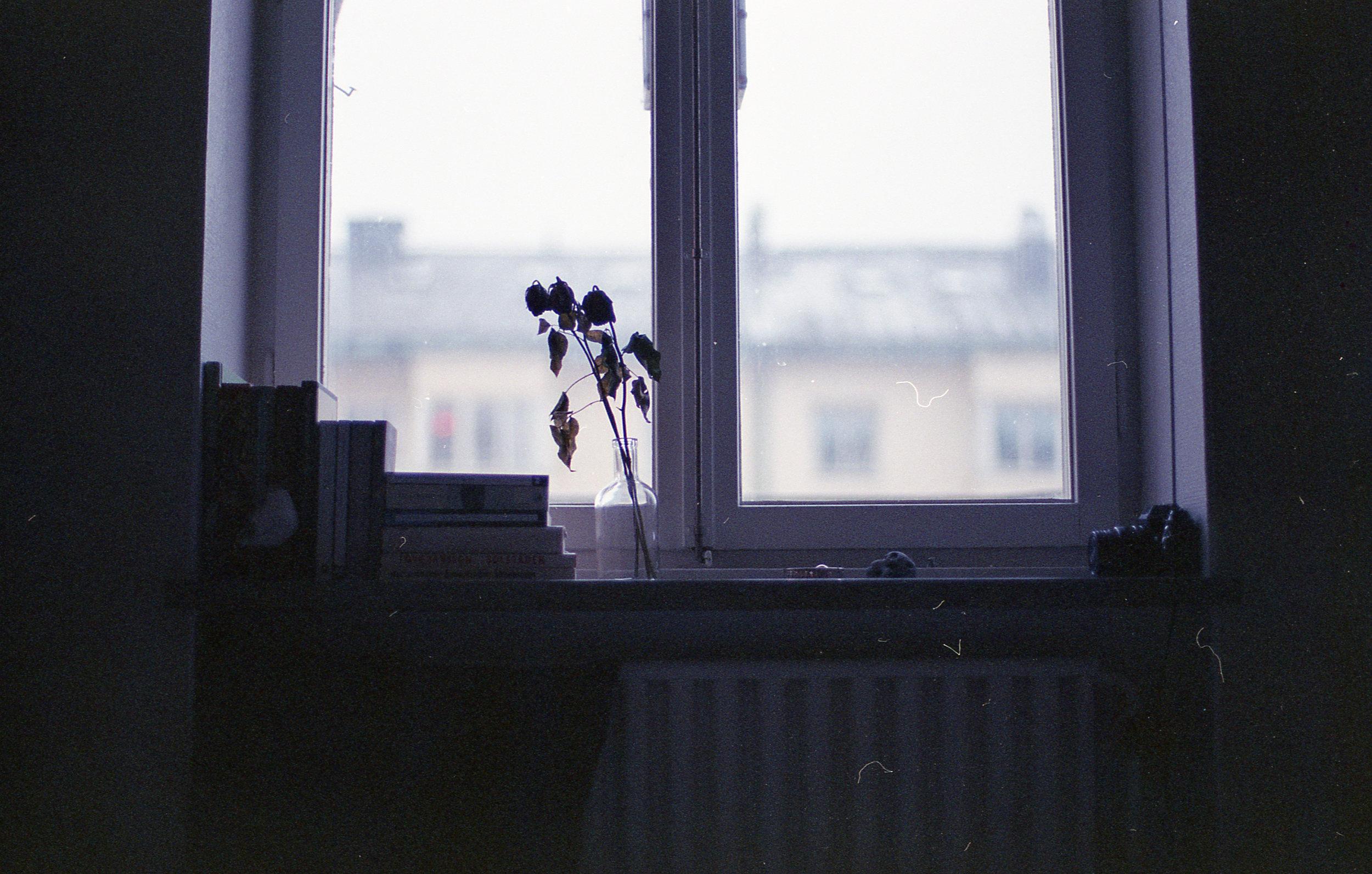 stockholm024.jpg