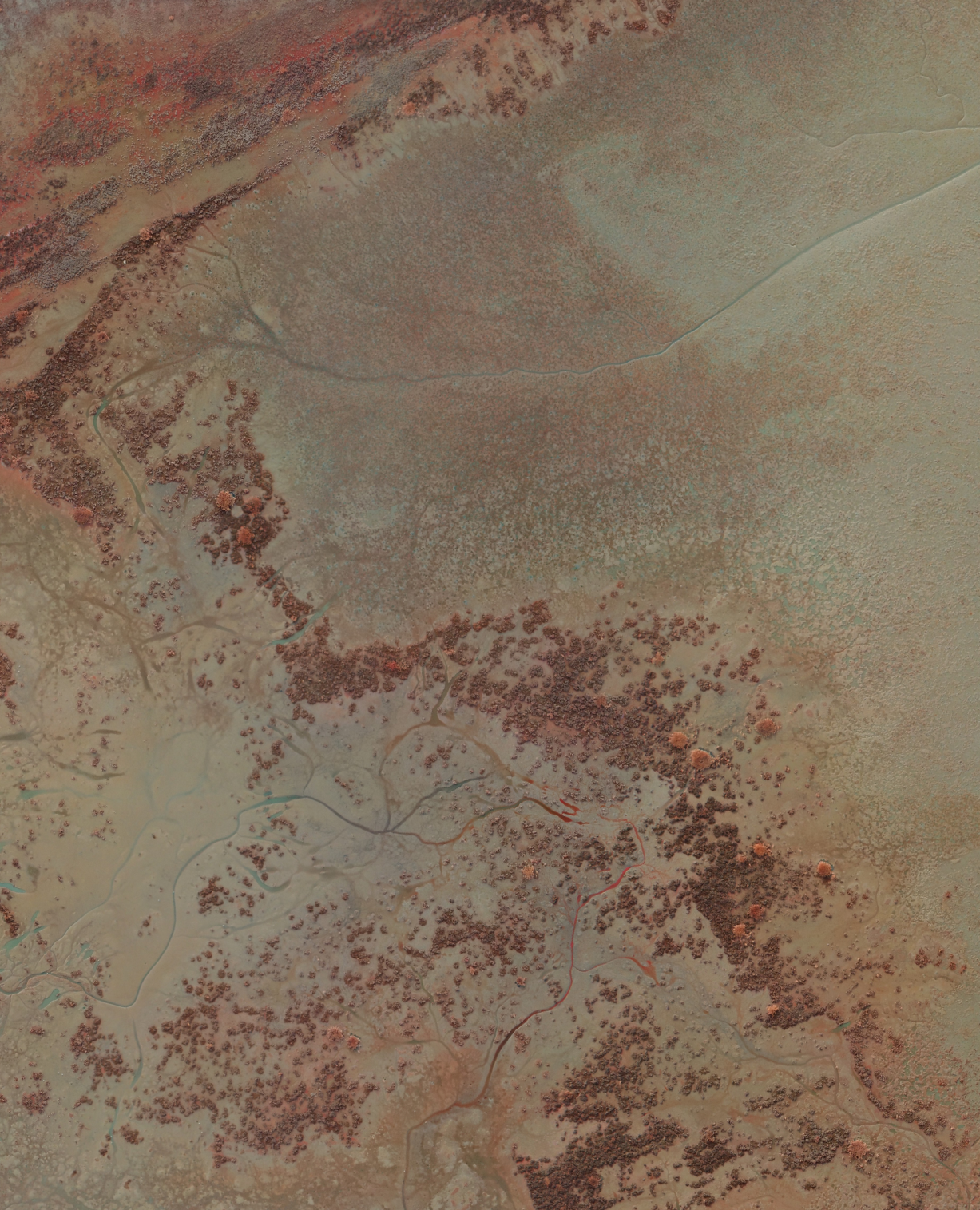 NDVI_highres_cropped.png