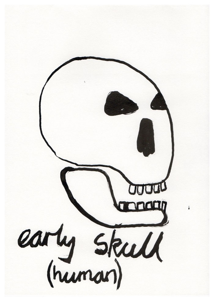 skulls004.jpg