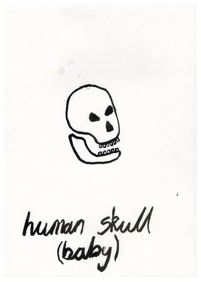 skulls006.jpg