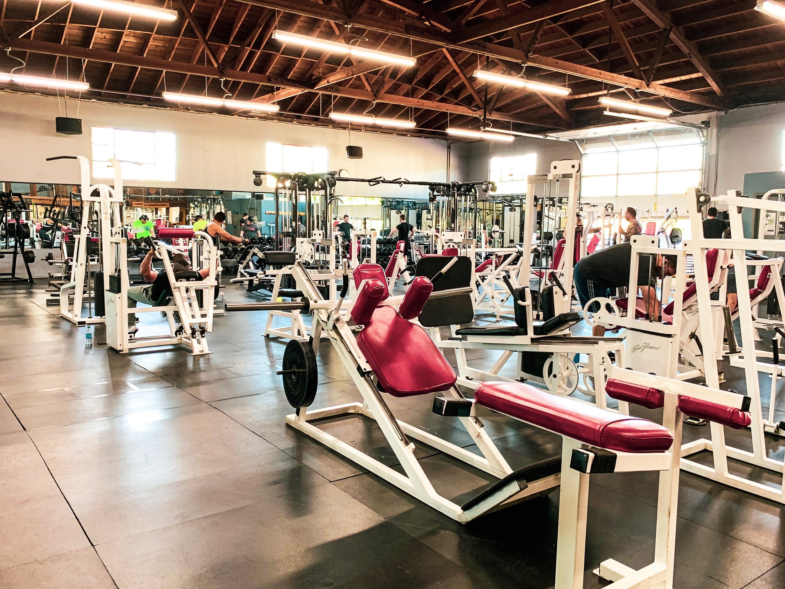 BASIC - Unlimited Open GymSTARTING AT $49/MONTH