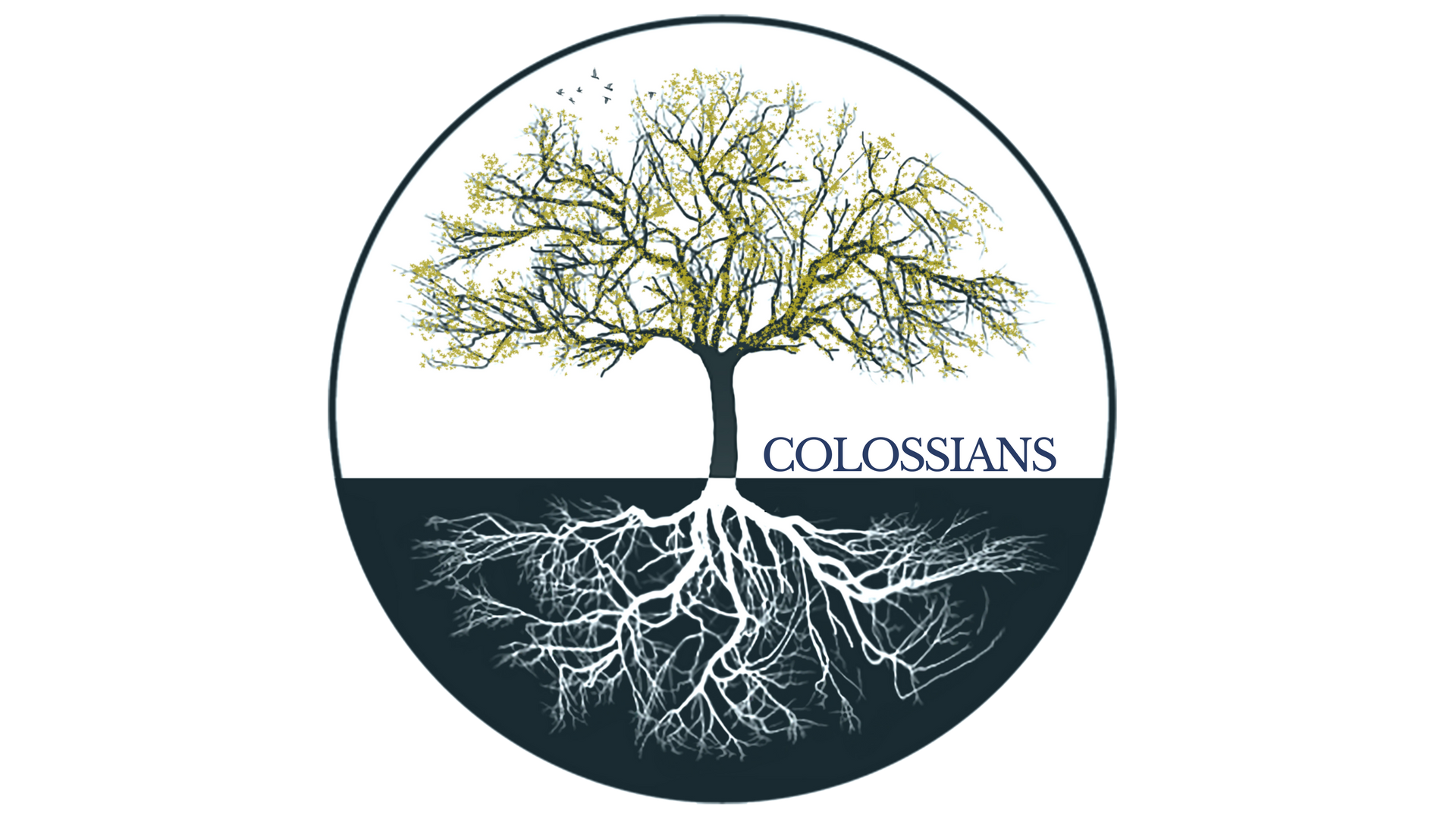 Colossians series images (5).png