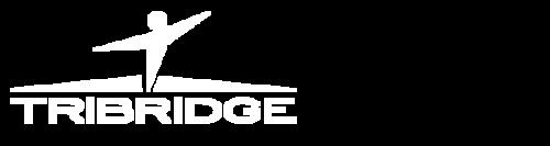 client_tribridge_white@2x.png