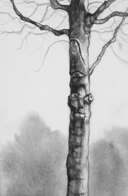 TREE SPIRIT IV  PENCIL AND CHARCOAL ON PAPER