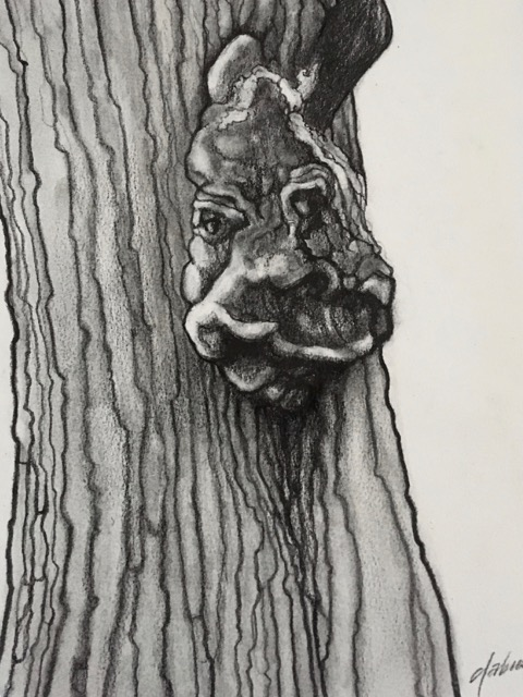 TREE SPIRIT VII  PENCIL AND CHARCOAL ON PAPER