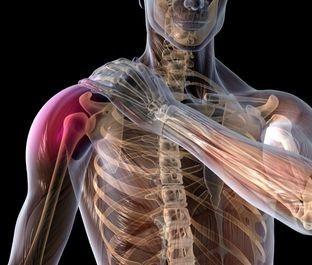 Shoulder Rehabilitation After Rotator Cuff Repair - Webinar