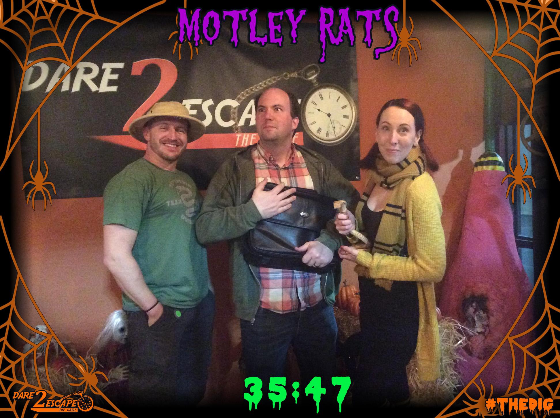 Motley Rats.jpg