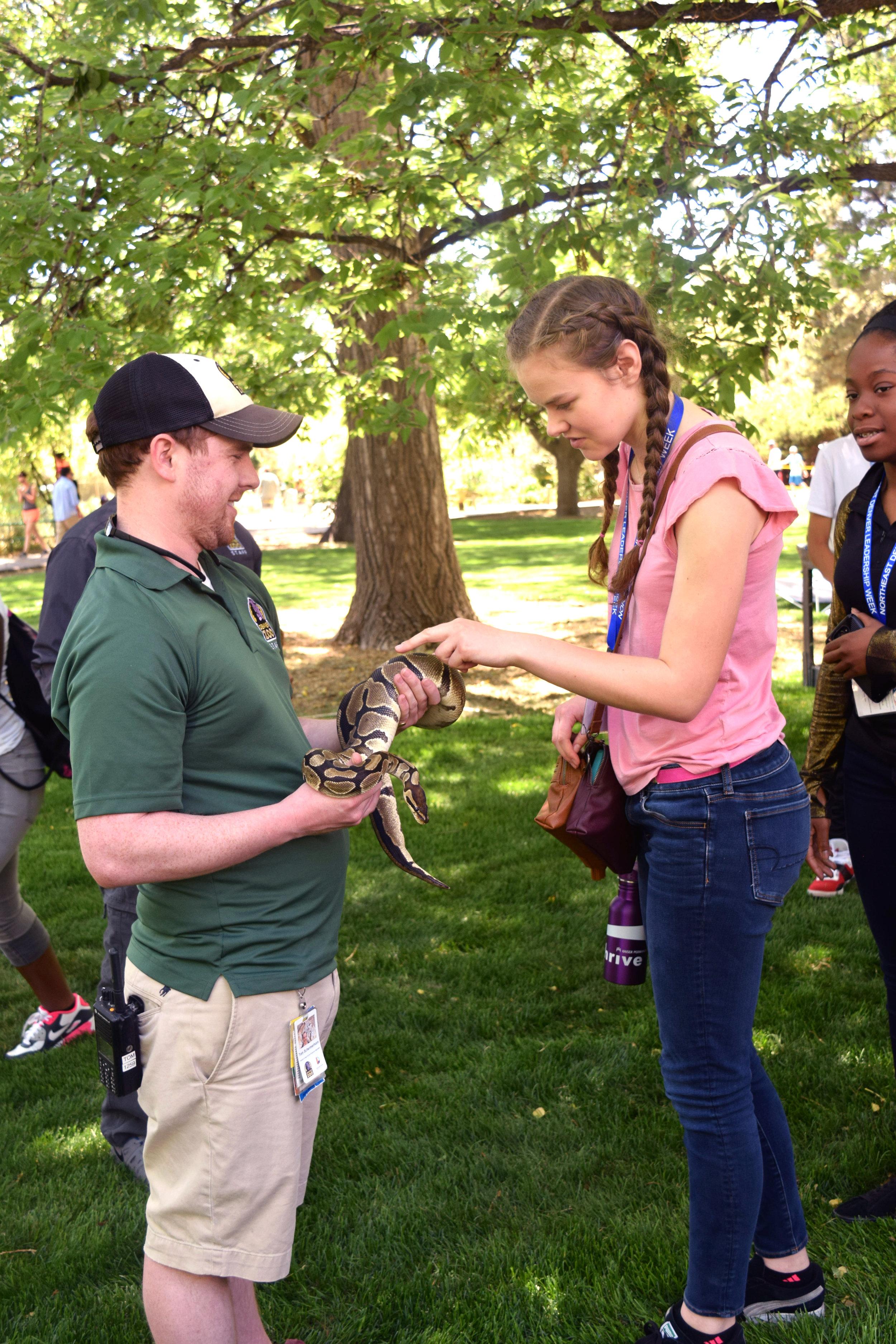 Snake at the zoo.jpg