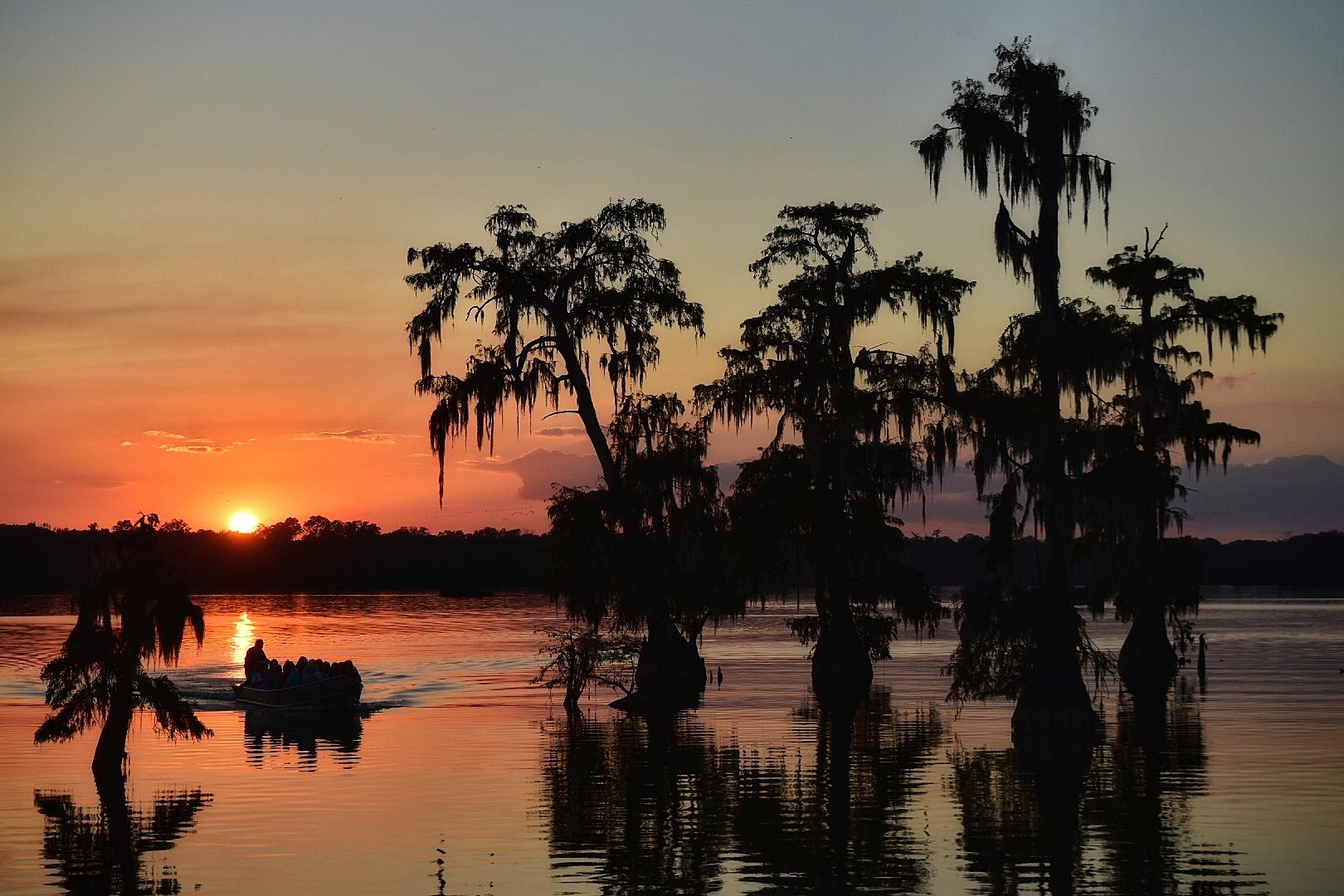Lake Martin, Louisiana. Photo by Marc Boswell.