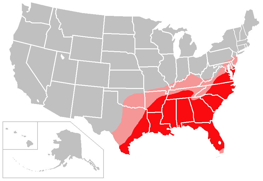 The Cotton Belt of the Southeast