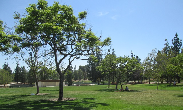 7484 Vineyard ave, Rancho Cucamonga CA 91730 - Small Group Fitness Classes -(only 8 participants per class)