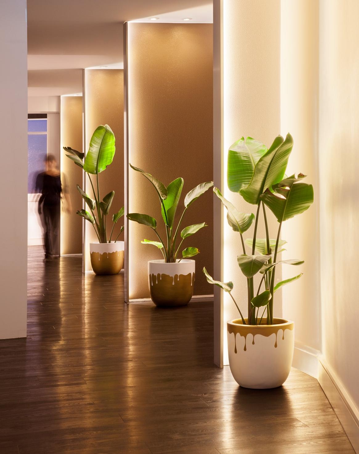 Botanica+Day+Spa_Hallway1.jpg
