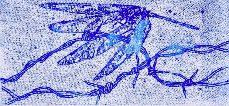 Descend_JWT_DragonflySeries_Monoprint_Ink_36x18cm_DSC_7466-2-17 copy-17-17.jpg20180214-22942-1jnipf.png