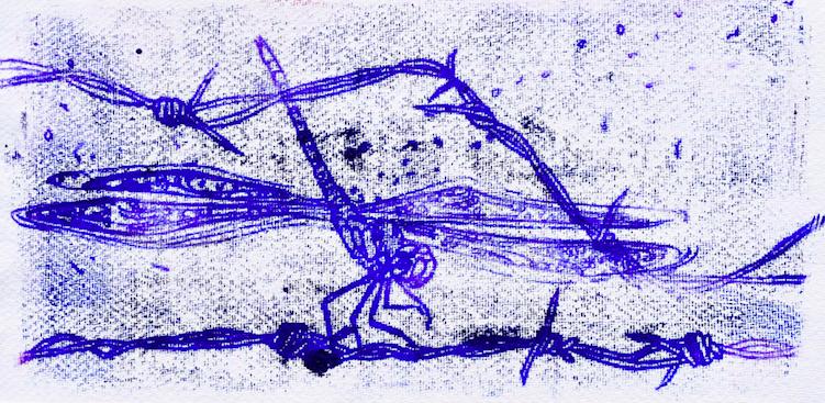 Rest_JWT_DragonflySeries_Monoprint_Ink_36x18cm_DSC_7577-2-28 copy-25-24.jpg20180214-22530-19234y5.png