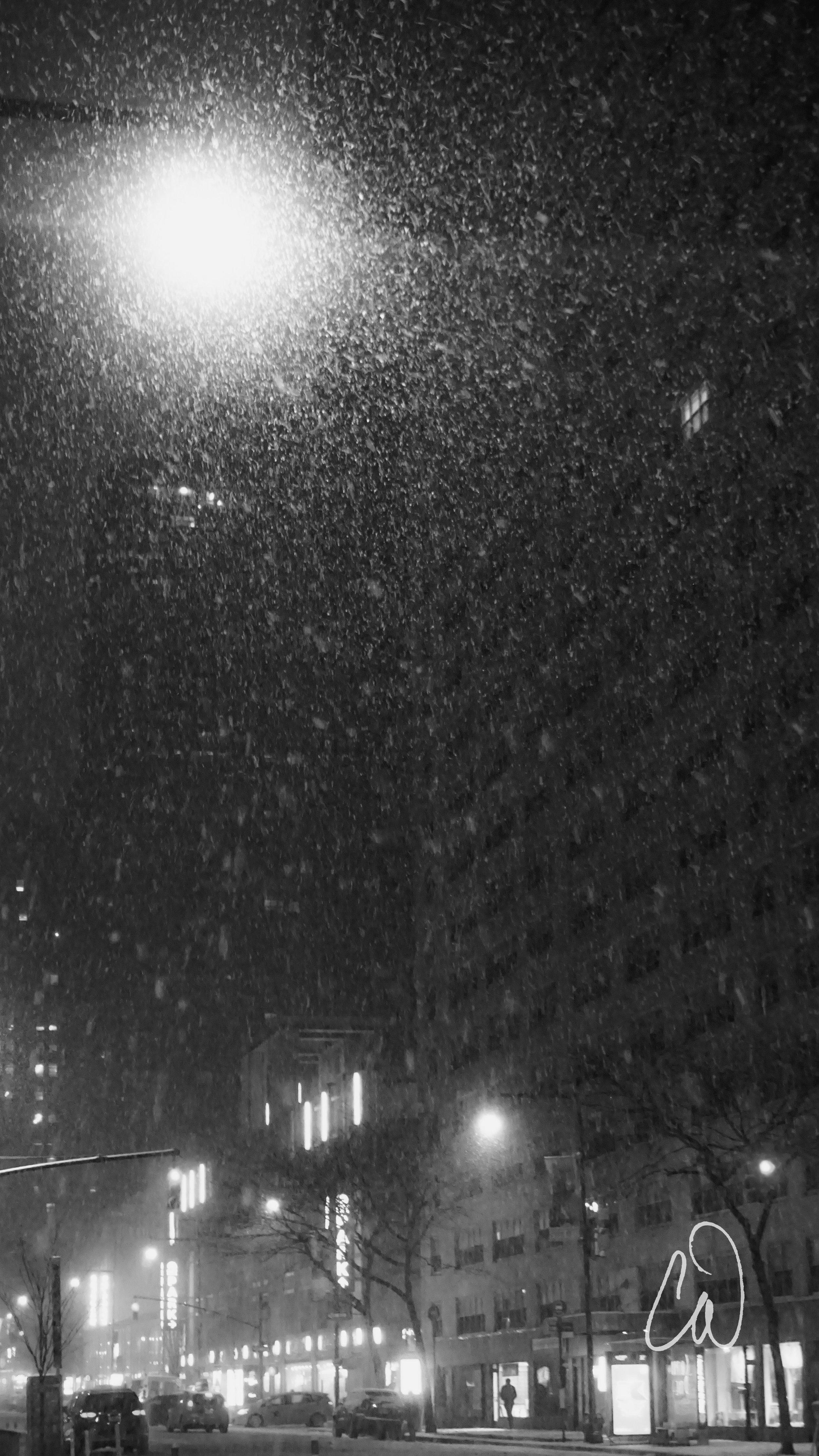 Snowfall8aveLogo.jpg