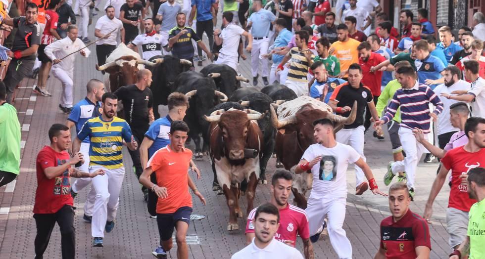 1535449422_117875_1535459285_noticia_normal.jpg