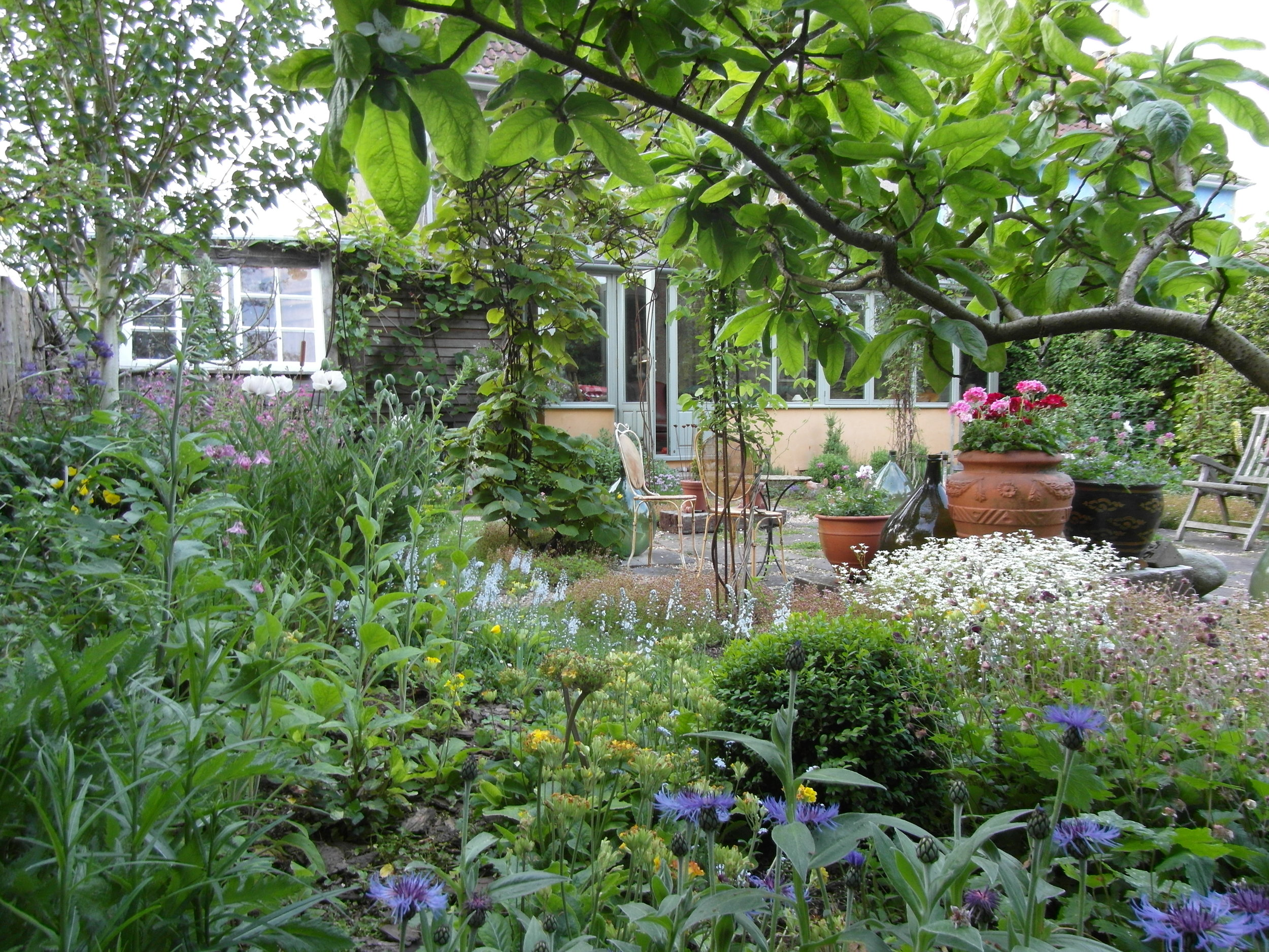 Creating Gardens   Beautiful, nurturing, bio-diverse places providing enormous benefits for ourselves and the environment...