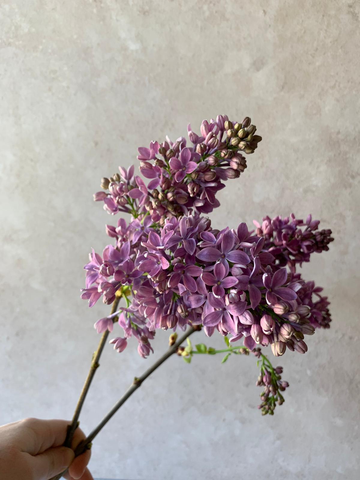 Lilac Wedding Flower