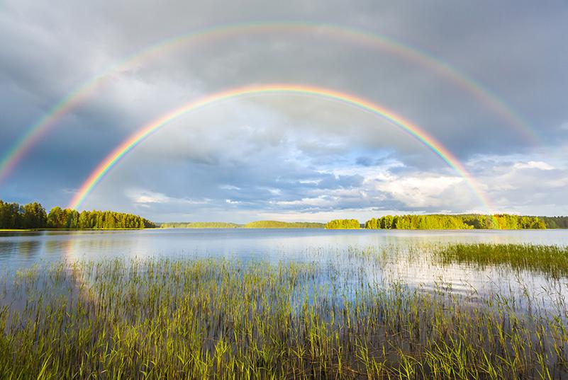 Rainbow revitaliser