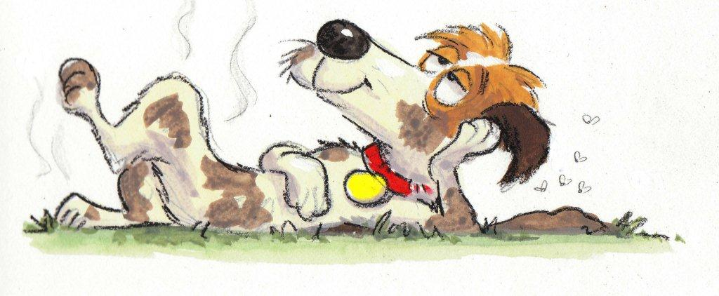 A Dog's Life | Roaring Brook Press