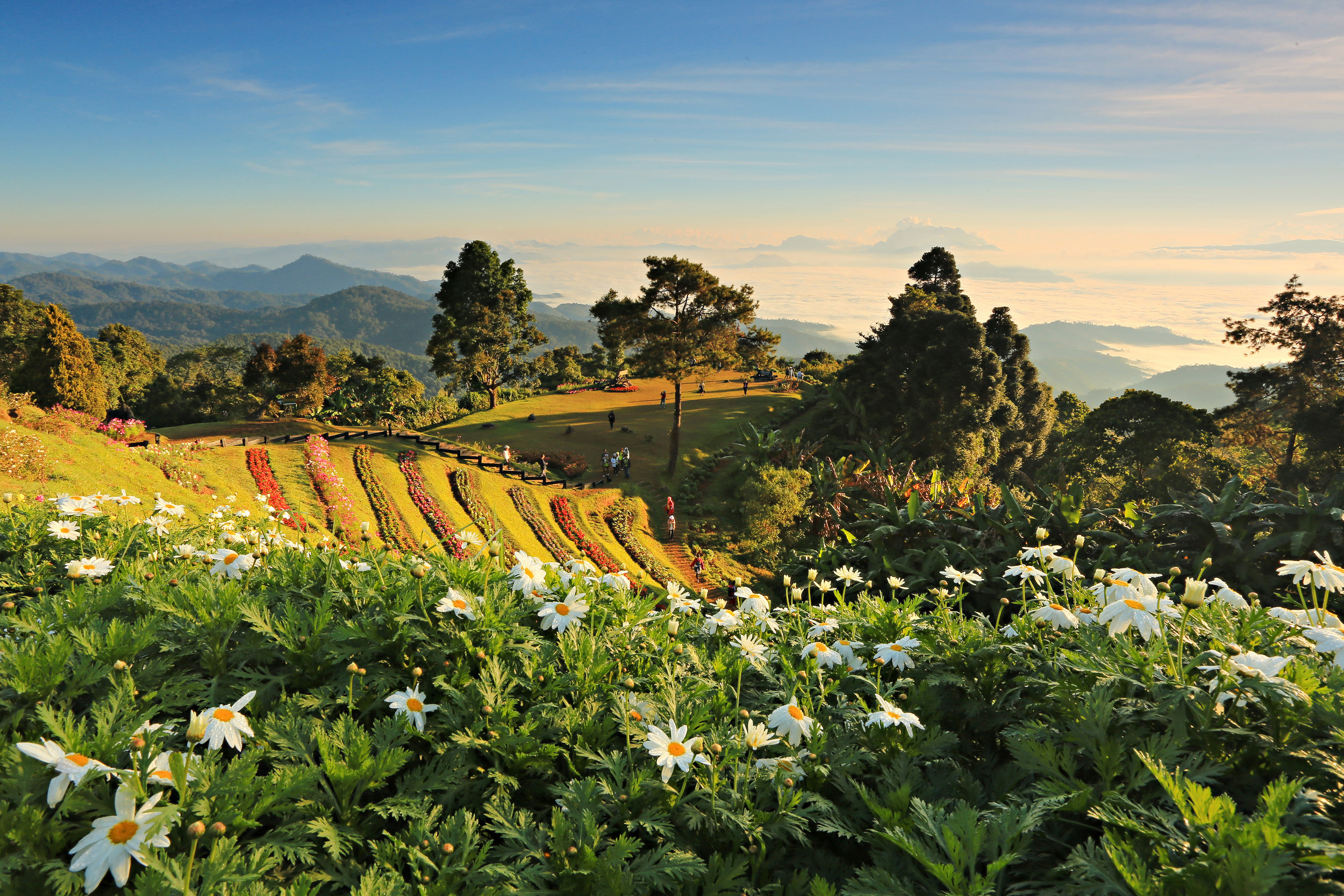 Huay_Nam_Dung_National_Park_Chiang_Mai_Thailand.jpg