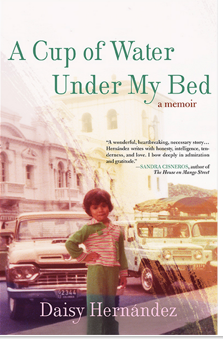 book cover 1.png