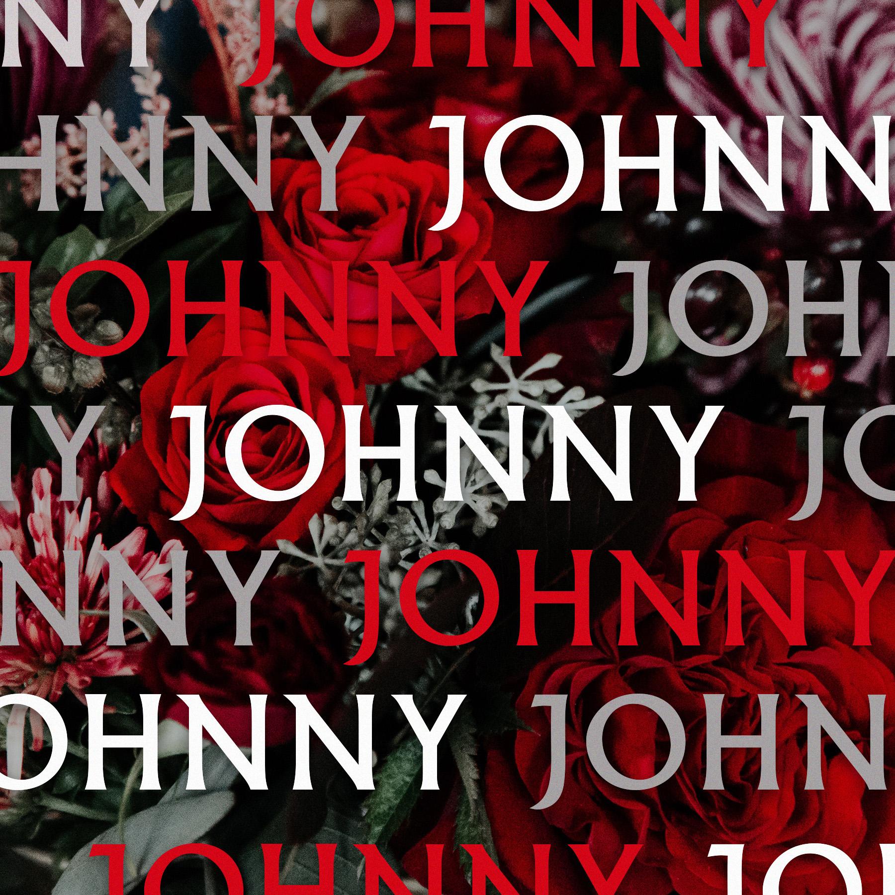 Heres-Johnny.jpg