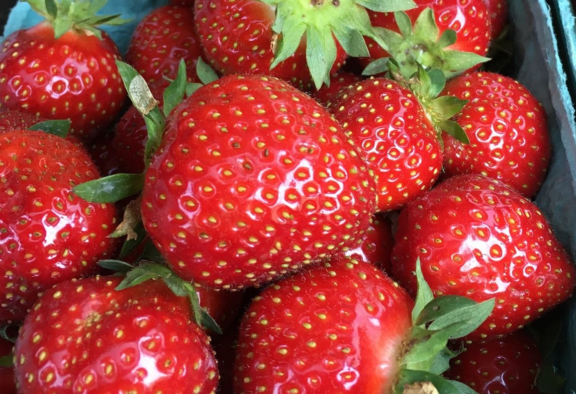 Strawberries1.jpg