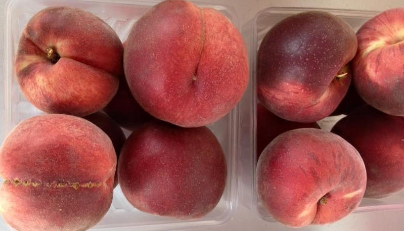 White Peaches - We grow four different varieties of white peaches. These sugary sweet peaches are great for eating fresh.
