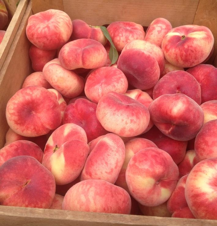 Donut Peaches - We grow both white and yellow donut peaches. These uniquely shaped, disk like peaches are extremely sweet and juicy, you cannot stop at just one. They ripen in early August.