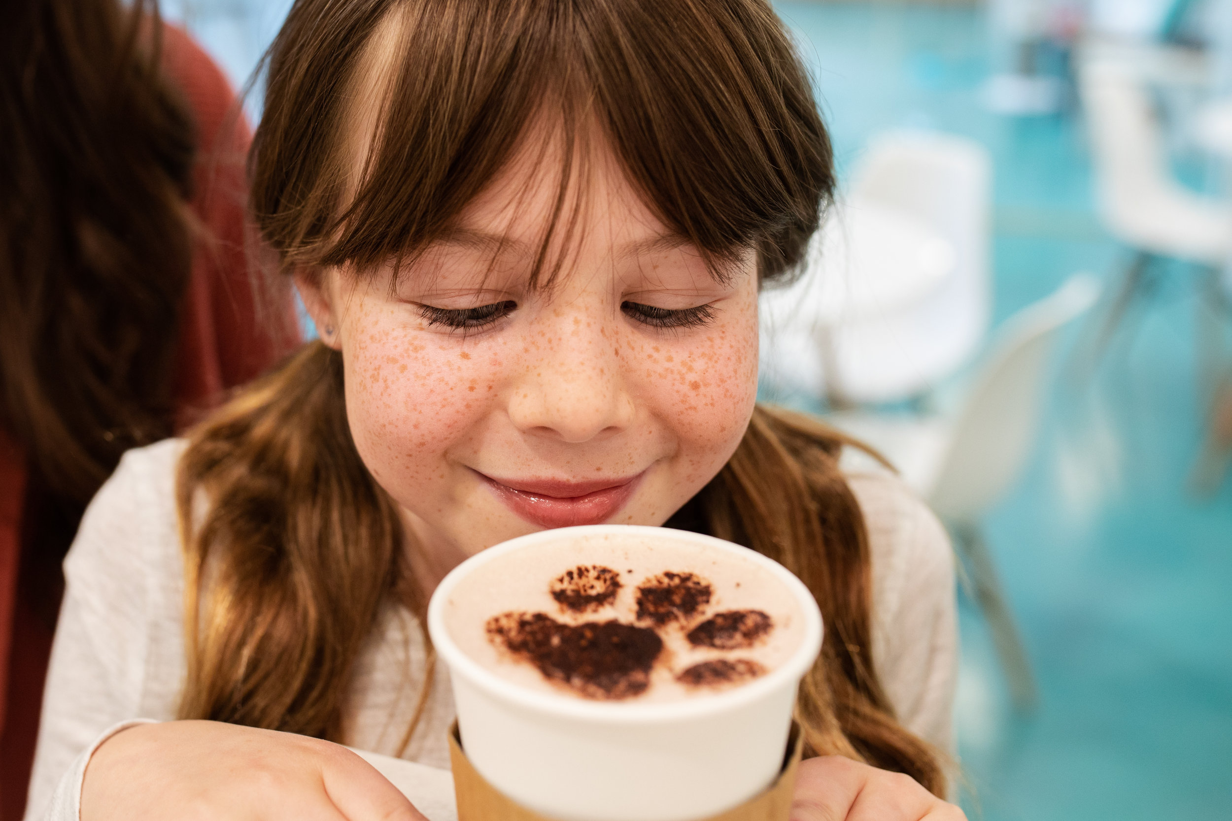 Ragdoll Hot Chocolate -