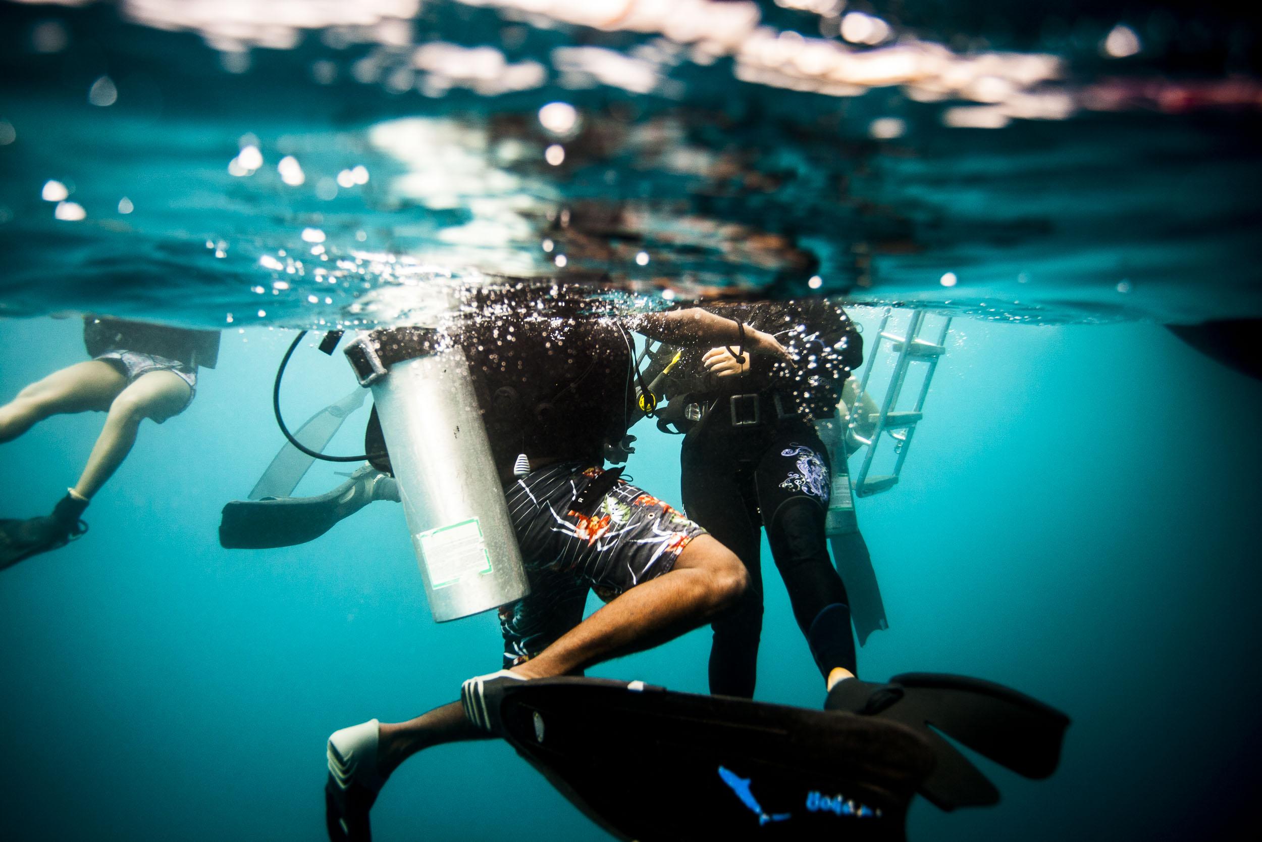 liveaboard-maldives-scuba-diving-uw.jpg