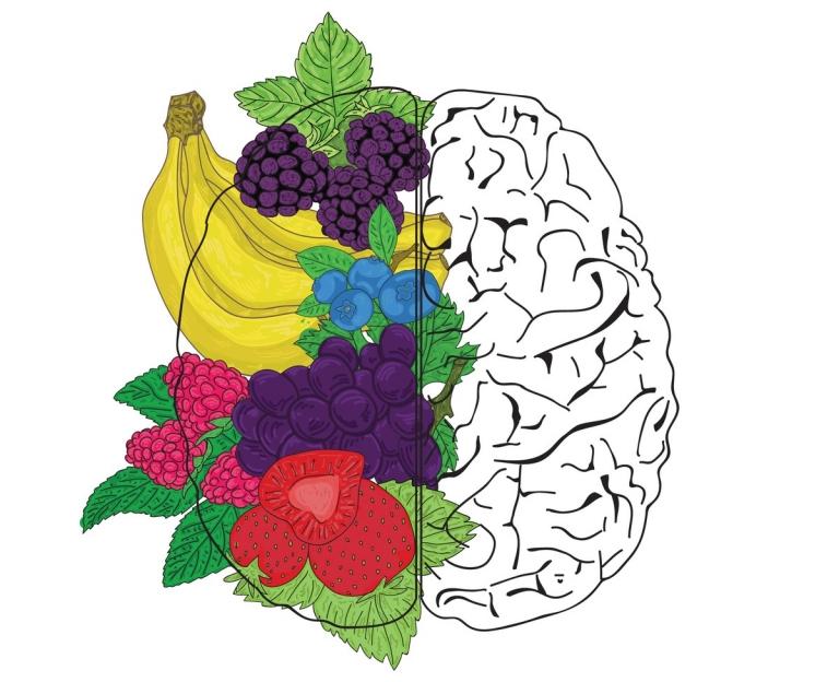 https://askthescientists.com/nutrients-brain-health/
