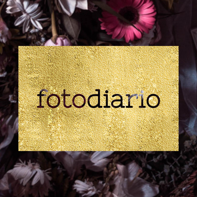 Boton fotodiario.jpg