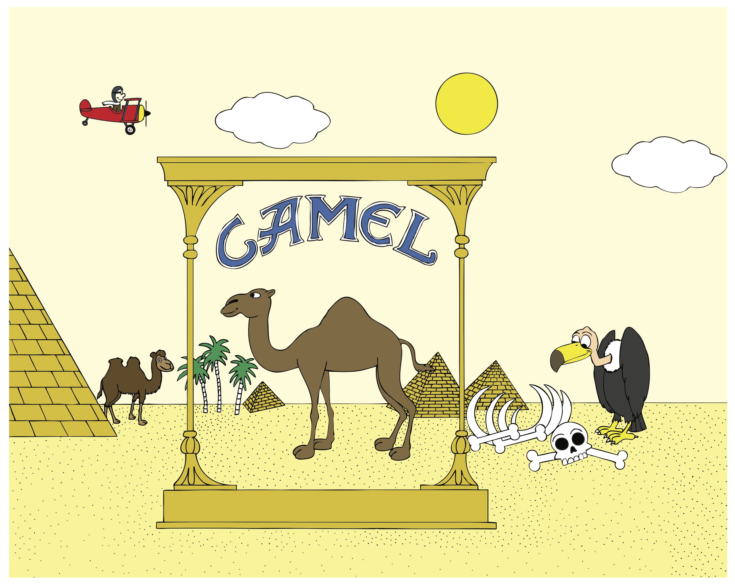 camel in egypt color 16x20.jpg