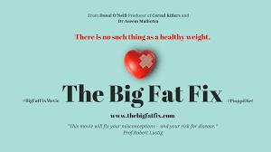 big fat fix.png