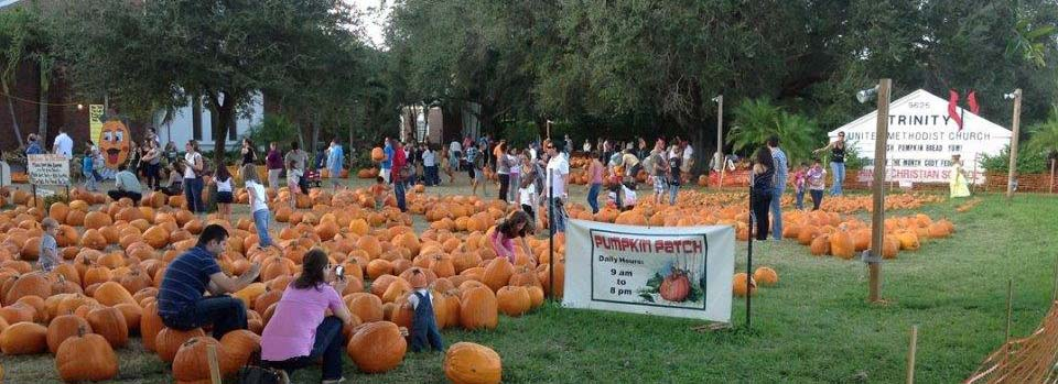 Trinity United Methodist Church - A great area to go find your perfect pumpkin to take home ! Trinity United Methodist Church has had the cutest patch to walk around since 2013 and it's a great spot to take pictures at! We all know everyone wants those basic pumpkin pictures, so go ahead and take yourself to this awesome spot!