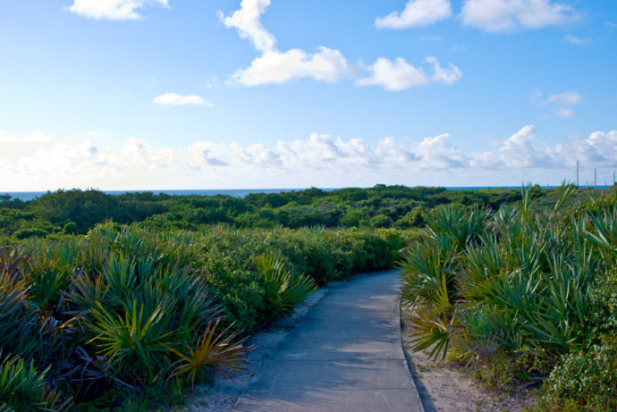 Juno Dunes Natural Area - Just next to the Loggerhead Marine Life Center lays 576 acres of botanical diversity. With two trails to pick from, Juno Dunes is a great way to enjoy some rays of sunshine and see a little bit of old Juno Dunes!